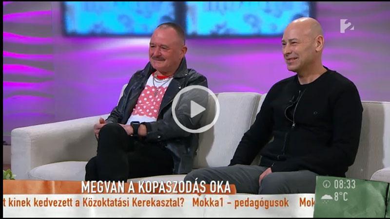 Sikos dr. a TV2 Mokka műsorában a hajbeültetésről és a kopaszodásról